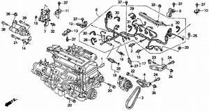 Honda Spark Plugs