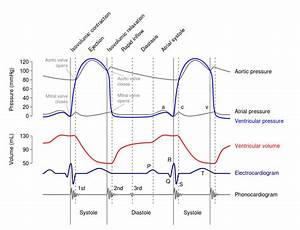 Water Pressure Diagram