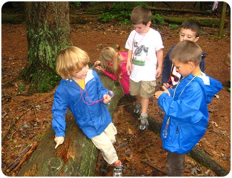curriculum south shore 664 | preschool kids in woods