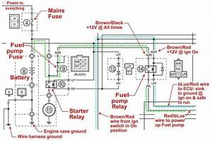Wiring Diagram For Rhino 700 2009