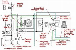 Powerflex 700 Wiring Diagram 41156 Enotecaombrerosse It