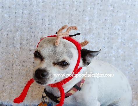 posh pooch designs dog clothes maxs antler crochet