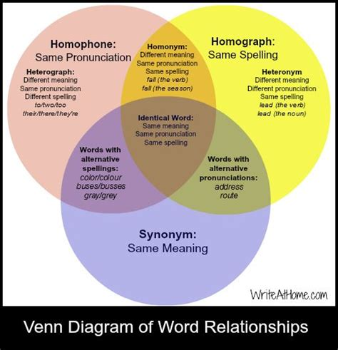 Homographs, Venn Diagrams And Words On Pinterest
