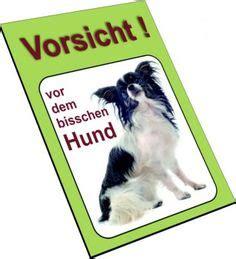 hundebekleidung für chihuahua hinweis schild gefahrenaufkleber schutzhelm sto 223 kappen