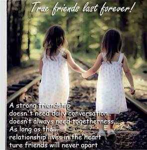 40 Best Friendship Quotes For True Friends