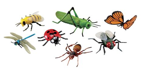 Jumbo Insect Set  School Specialty Canada