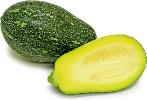 Chinese Zucchini Information, Recipes and Facts