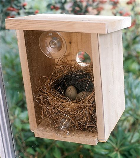 nest view cedar window bird house