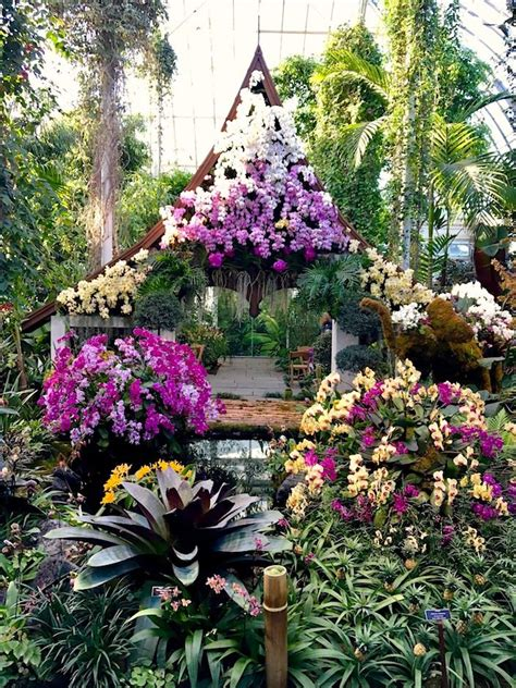 botanical gardens orchid show 480 best gardens images on pinterest gardens beautiful gardens and landscaping