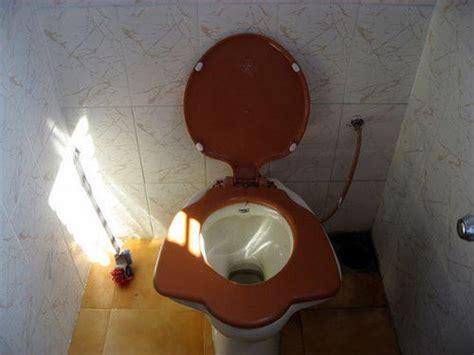 strangest toilets    world