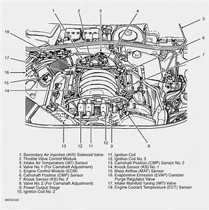 5 0 Engine Diagram