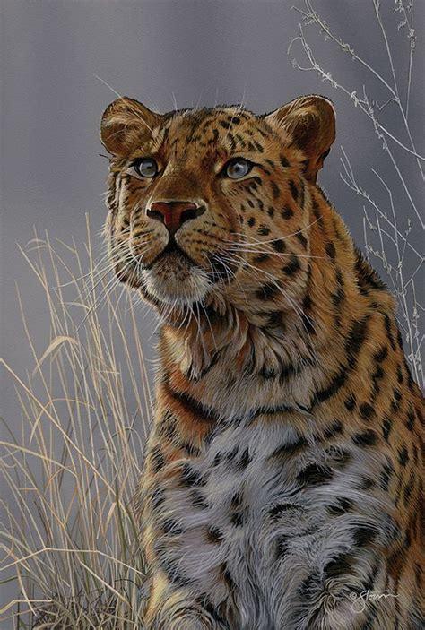 amur leopard wildlife painting  scot storm art