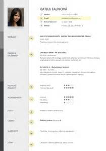 resume template free download docx vzor cv curriculum vitae pinterest