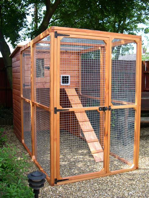 cat building building a catio an outside cat enclosure whitburn