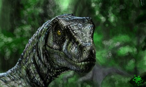 colors  velociraptor  klausboss