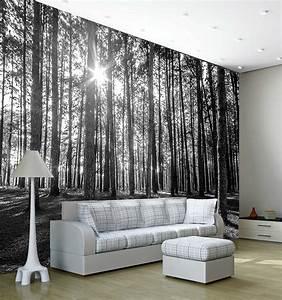 Fototapete Auf Raufaser : fototapete waldrand licht und schatten fototapete 8 teile ~ Markanthonyermac.com Haus und Dekorationen