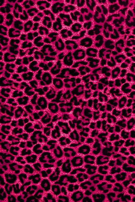 Wallpaper Animal Print Pink - pink leopard background animal print