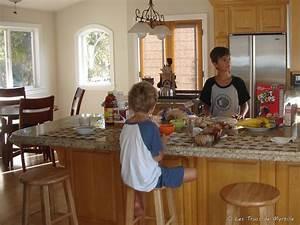 Bar Cuisine Ouverte : les trucs de myrtille manger dans la cuisine ~ Melissatoandfro.com Idées de Décoration