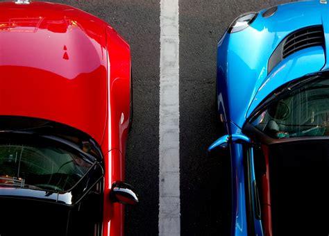marder vertreiben auto marder im auto sorgen gerade im herbst f 252 r gro 223 e sch 228 den