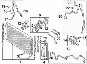 Ford Mustang A  C Compressor  Trans  Repair  Manual