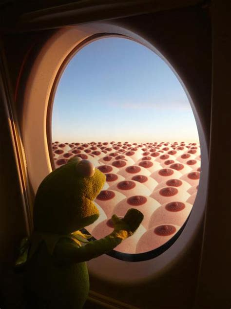 kermit    airplane window photoshopbattles