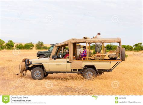 african safari jeep safari with lions africa editorial image image of