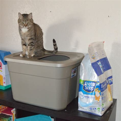 covered litter box diy covered cat litter box as leels