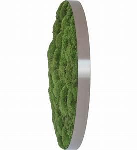Vertikaler Garten Kaufen : kugelmoosbild rund im greenbop online shop kaufen ~ Watch28wear.com Haus und Dekorationen