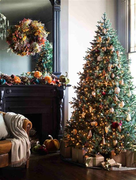 Decorating Ideas For Trees by Colorado Mountain Spruce Tree Decorating Ideas