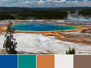 green with envy 5 reasons why we can39t resist earth tones With kitchen colors with white cabinets with yellowstone national park sticker