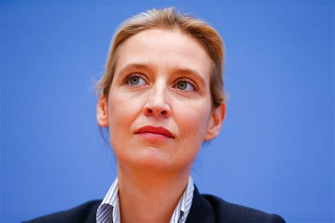 weidel beine the leading germany s far right