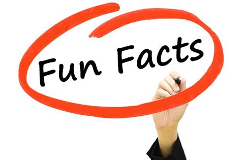 co fact 7 how reliable 7 fun facts about berkshire