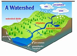 Watershed Ecology