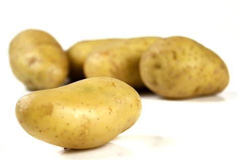 une pomme de terre qui r 233 siste au sel rtflash fr