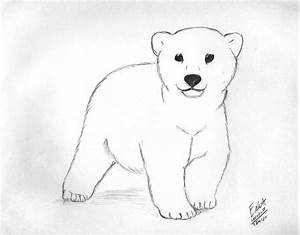 How to draw bear cub scout