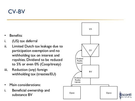 Cv Structure by Tax Opportunities Investing Through The Netherlands