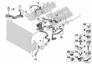 Bmw 550i Coolant Hose  Cooling  Hoses  System