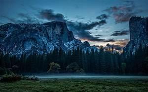 Nature, Landscape, Forest, Trees, Mountain, Mist, Sunset