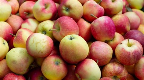 The real reason so many apple varieties are extinct
