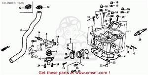 Honda Ch150 Elite 150 1987  H  Usa Cylinder Head