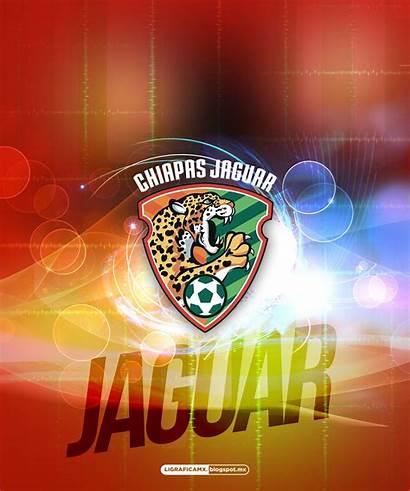 Chiapas Ligraficamx