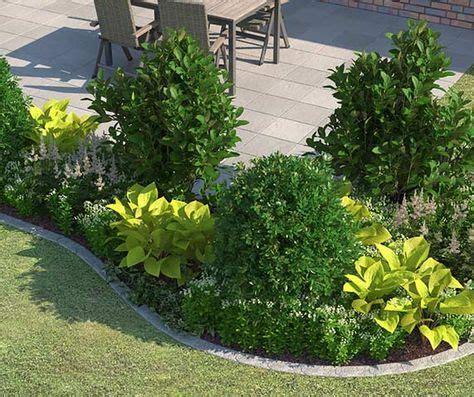 immergrüne bepflanzungen am gartenzaun beet ganz einfach anlegen gestalten garten garten