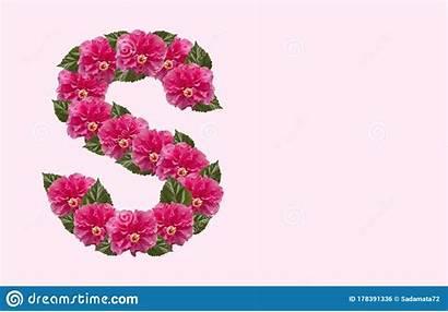 Flower Hibiscus Letter Double Alphabet Rose Headed