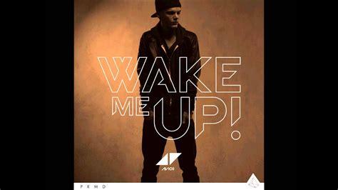 Wake Me Up (pang Remix) (full Song