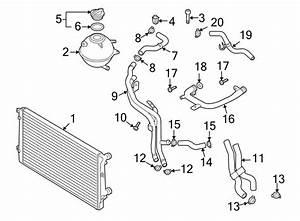 Audi Tt Engine Coolant Hose  Trans  Manual  Auto