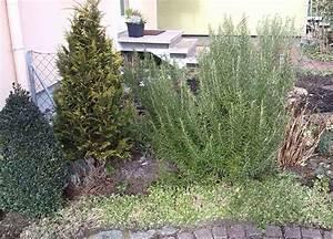 Pflanzen Für Den Vorgarten : pflanzen fur den garten ~ Michelbontemps.com Haus und Dekorationen