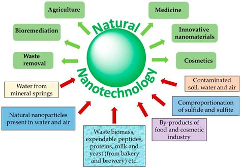antioxidants  full text natural nanoparticles