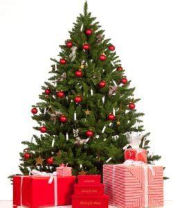 lagerung des weihnachtsbaumes vor heiligabend wohnen de