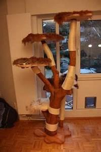 More For Cats Kratzbaum : wir bauen ihren kratzbaum sandy 39 s cat world pinterest ~ Whattoseeinmadrid.com Haus und Dekorationen