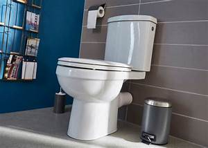 Installer Un Wc : comment installer un wc castorama ~ Melissatoandfro.com Idées de Décoration